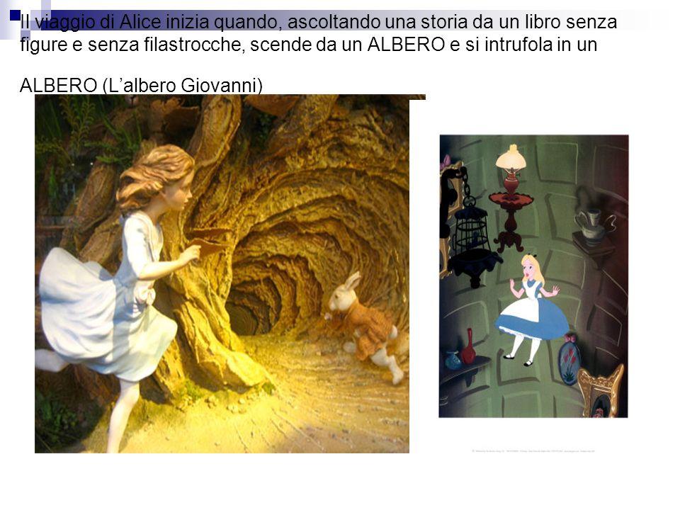 Il viaggio di Alice inizia quando, ascoltando una storia da un libro senza figure e senza filastrocche, scende da un ALBERO e si intrufola in un ALBERO (Lalbero Giovanni)