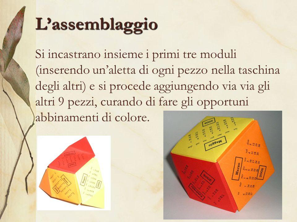 Lassemblaggio Si incastrano insieme i primi tre moduli (inserendo unaletta di ogni pezzo nella taschina degli altri) e si procede aggiungendo via via