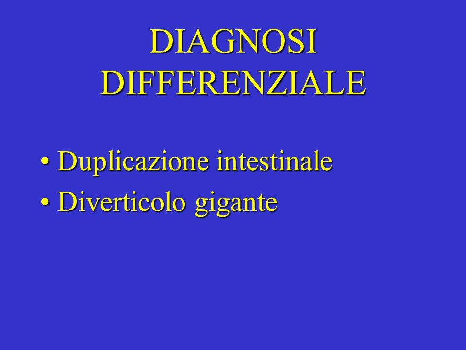 DIAGNOSI DIFFERENZIALE Duplicazione intestinaleDuplicazione intestinale Diverticolo giganteDiverticolo gigante