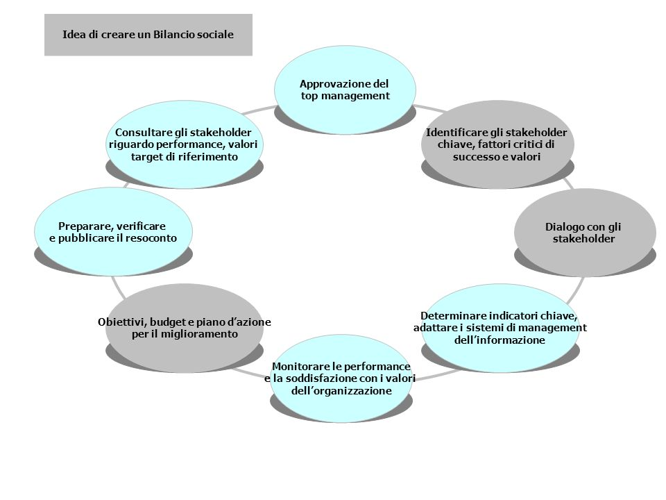 Identificare gli stakeholder chiave, fattori critici di successo e valori Dialogo con gli stakeholder Determinare indicatori chiave, adattare i sistemi di management dellinformazione Monitorare le performance e la soddisfazione con i valori dellorganizzazione Obiettivi, budget e piano dazione per il miglioramento Preparare, verificare e pubblicare il resoconto Idea di creare un Bilancio sociale Consultare gli stakeholder riguardo performance, valori target di riferimento Approvazione del top management