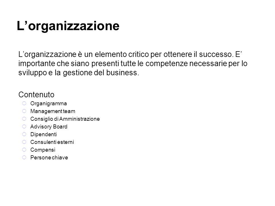 Lorganizzazione Lorganizzazione è un elemento critico per ottenere il successo. E importante che siano presenti tutte le competenze necessarie per lo