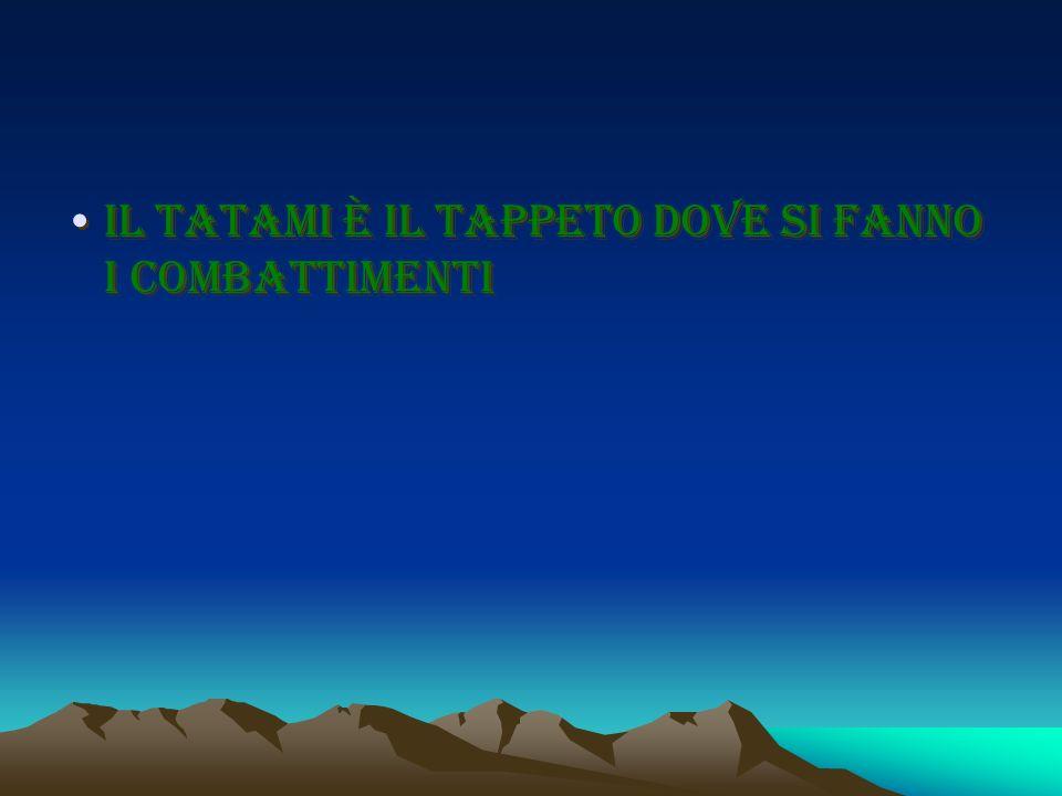 Il tatami è il tappeto dove si fanno i combattimenti