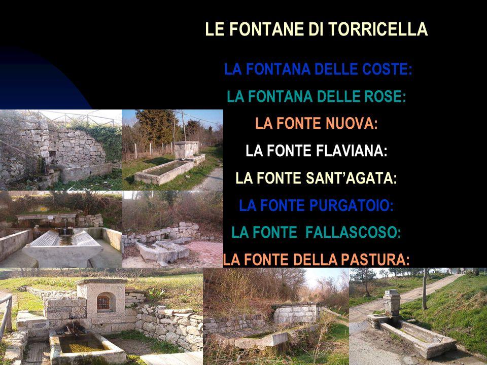 04/01/201410 LE FONTANE DI TORRICELLA LA FONTANA DELLE COSTE: LA FONTANA DELLE ROSE: LA FONTE NUOVA: LA FONTE FLAVIANA: LA FONTE SANTAGATA: LA FONTE P