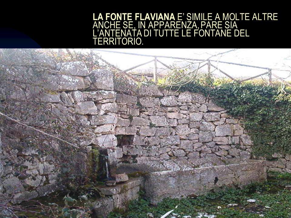 04/01/201414 LA FONTE FLAVIANA E SIMILE A MOLTE ALTRE ANCHE SE, IN APPARENZA, PARE SIA LANTENATA DI TUTTE LE FONTANE DEL TERRITORIO.