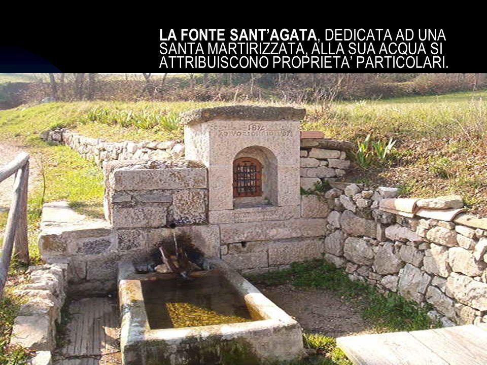 04/01/201415 LA FONTE SANTAGATA, DEDICATA AD UNA SANTA MARTIRIZZATA, ALLA SUA ACQUA SI ATTRIBUISCONO PROPRIETA PARTICOLARI.