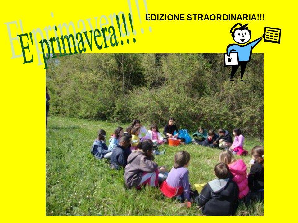 EDIZIONE STRAORDINARIA!!!