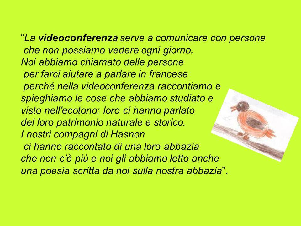 La videoconferenza serve a comunicare con persone che non possiamo vedere ogni giorno. Noi abbiamo chiamato delle persone per farci aiutare a parlare