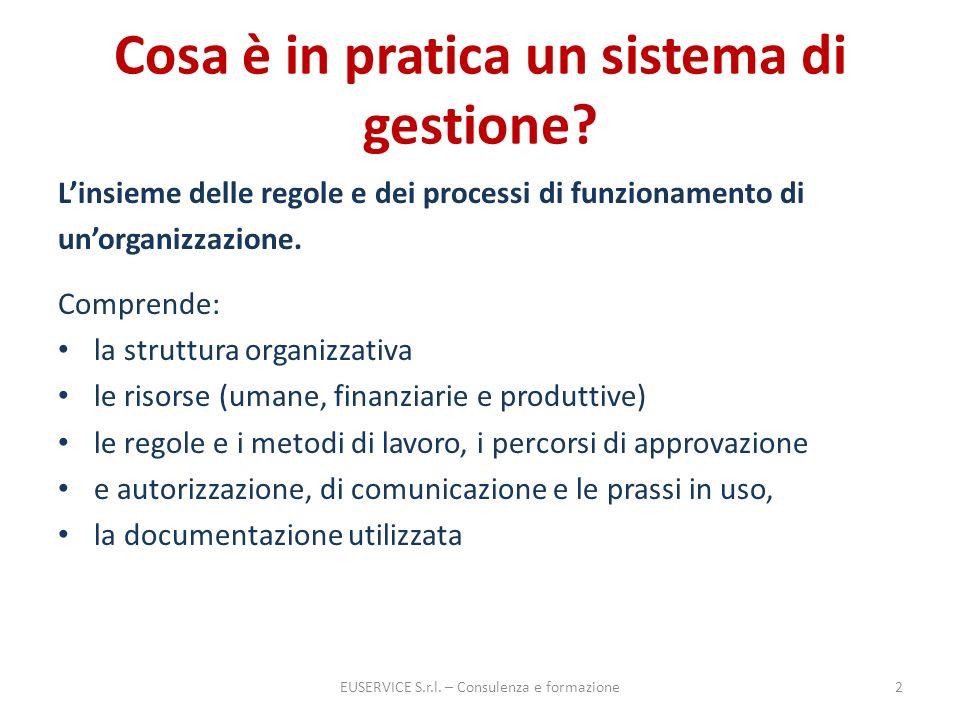 Cosa è in pratica un sistema di gestione? Linsieme delle regole e dei processi di funzionamento di unorganizzazione. Comprende: la struttura organizza