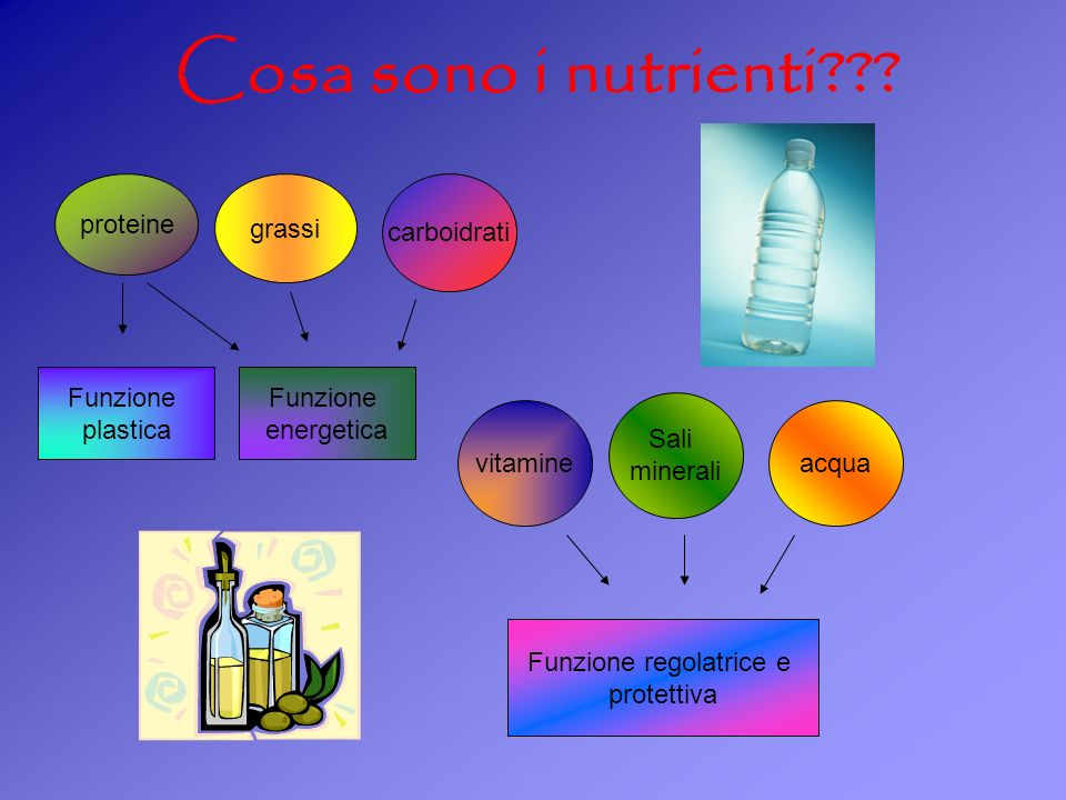 Cosa sono i nutrienti??? grassi carboidrati Funzione plastica Funzione energetica proteine vitamine Sali minerali acqua Funzione regolatrice e protett