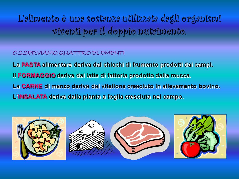Lalimento è una sostanza utilizzata dagli organismi viventi per il doppio nutrimento.