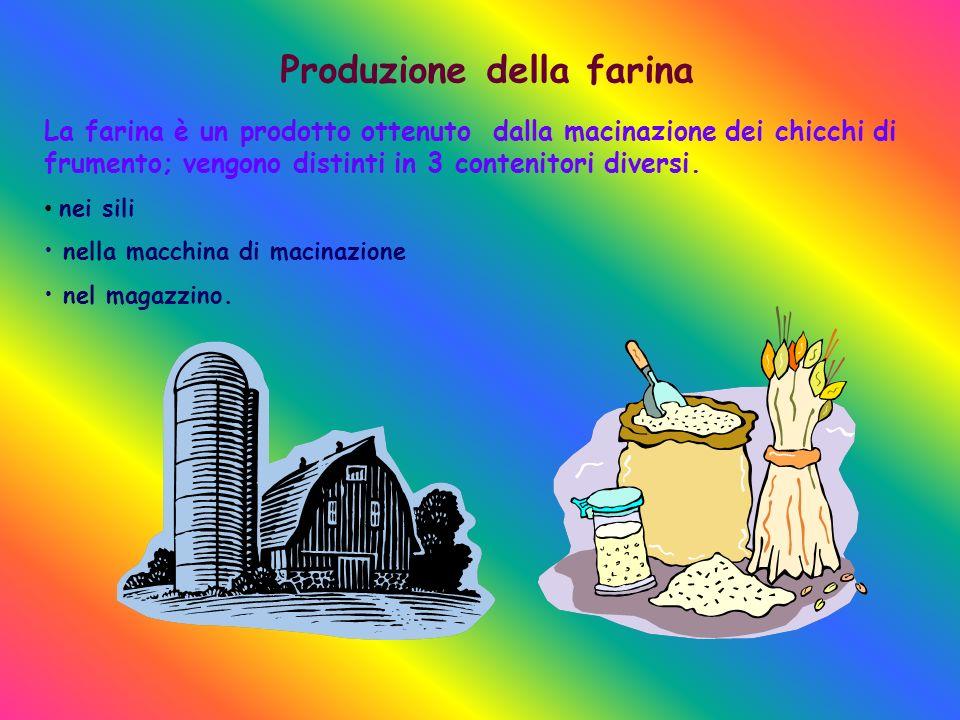 Produzione della farina La farina è un prodotto ottenuto dalla macinazione dei chicchi di frumento; vengono distinti in 3 contenitori diversi.