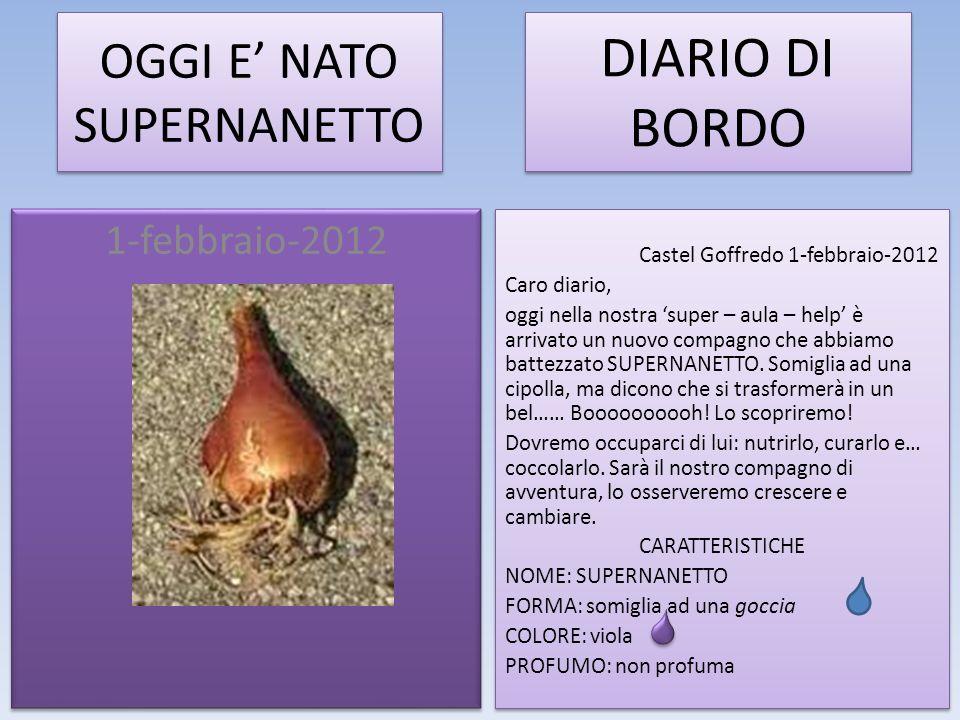 OGGI E NATO SUPERNANETTO 1-febbraio-2012 DIARIO DI BORDO Castel Goffredo 1-febbraio-2012 Caro diario, oggi nella nostra super – aula – help è arrivato