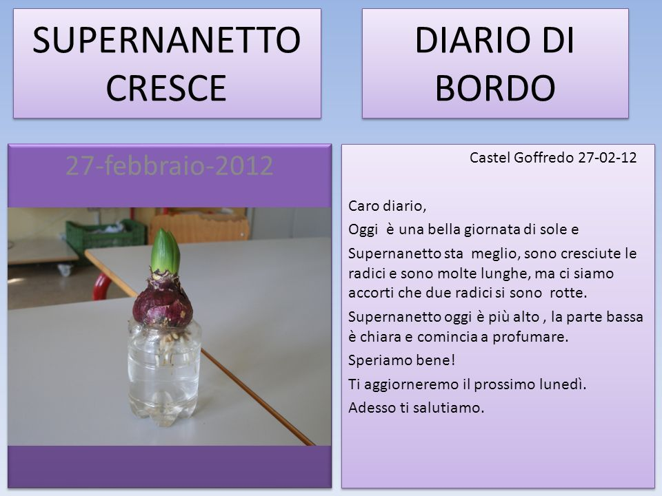 SUPERNANETTO CRESCE 27-febbraio-2012 DIARIO DI BORDO Castel Goffredo 27-02-12 Caro diario, Oggi è una bella giornata di sole e Supernanetto sta meglio