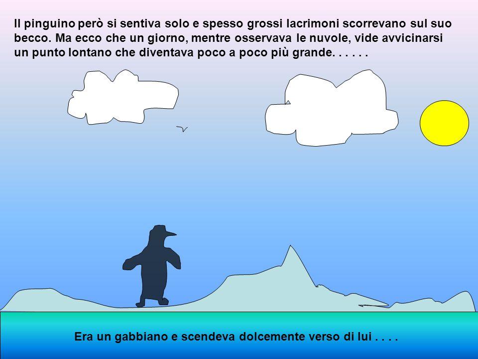 Per ingannare il tempo il pinguino faceva ginnastica correndo attorno alla sua isoletta, si esercitava nei tuffi con capriola,si allenava nel nuoto e