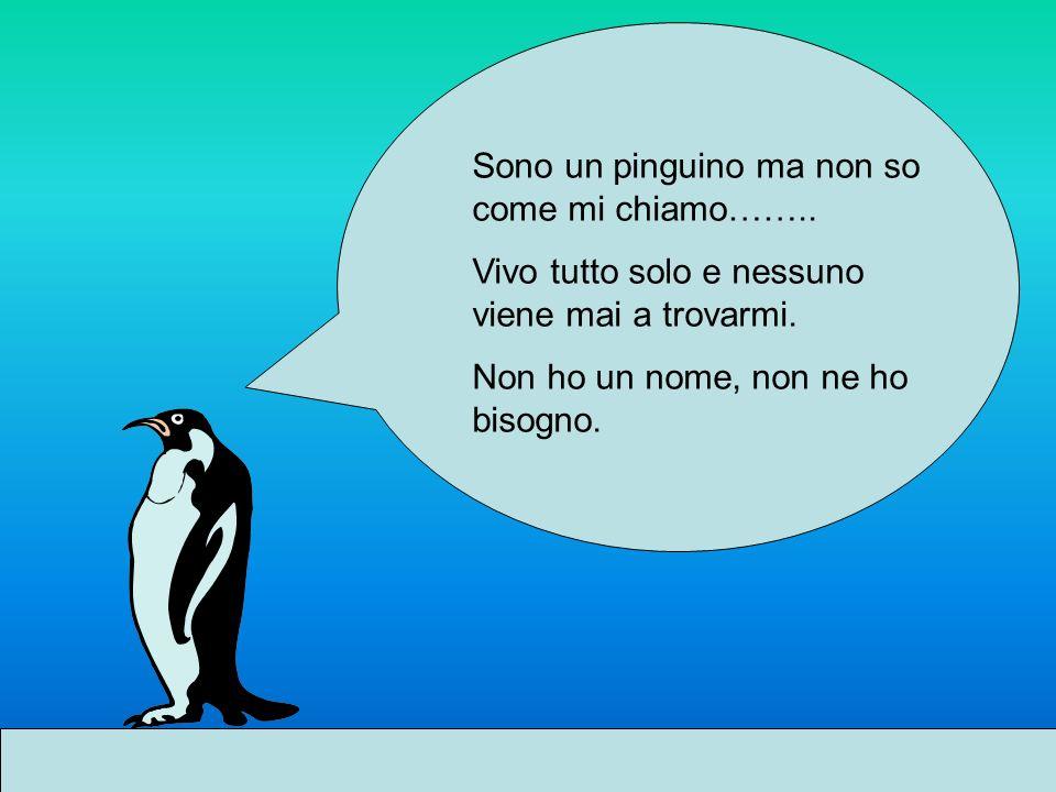 Sono un pinguino ma non so come mi chiamo……..Vivo tutto solo e nessuno viene mai a trovarmi.