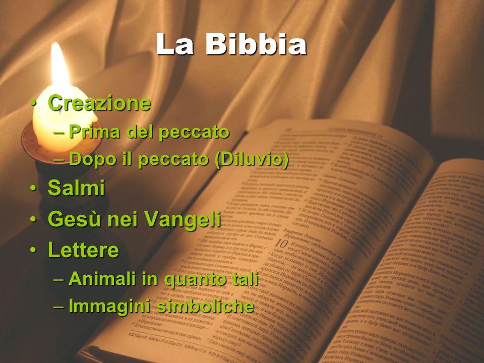 17 gennaio 2013 La Bibbia CreazioneCreazione –Prima del peccato –Dopo il peccato (Diluvio) SalmiSalmi Gesù nei VangeliGesù nei Vangeli LettereLettere