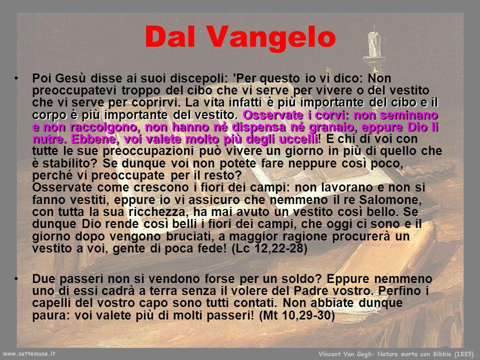 17 gennaio 2013 Dal Vangelo infatti è più importante del cibo e il corpo è più importante del vestito. Osservate i corvi: non seminano e non raccolgon