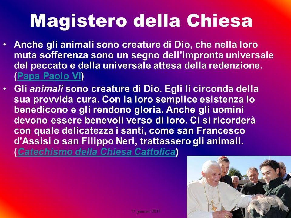 17 gennaio 2013 Anche gli animali sono creature di Dio, che nella loro muta sofferenza sono un segno dell'impronta universale del peccato e della univ