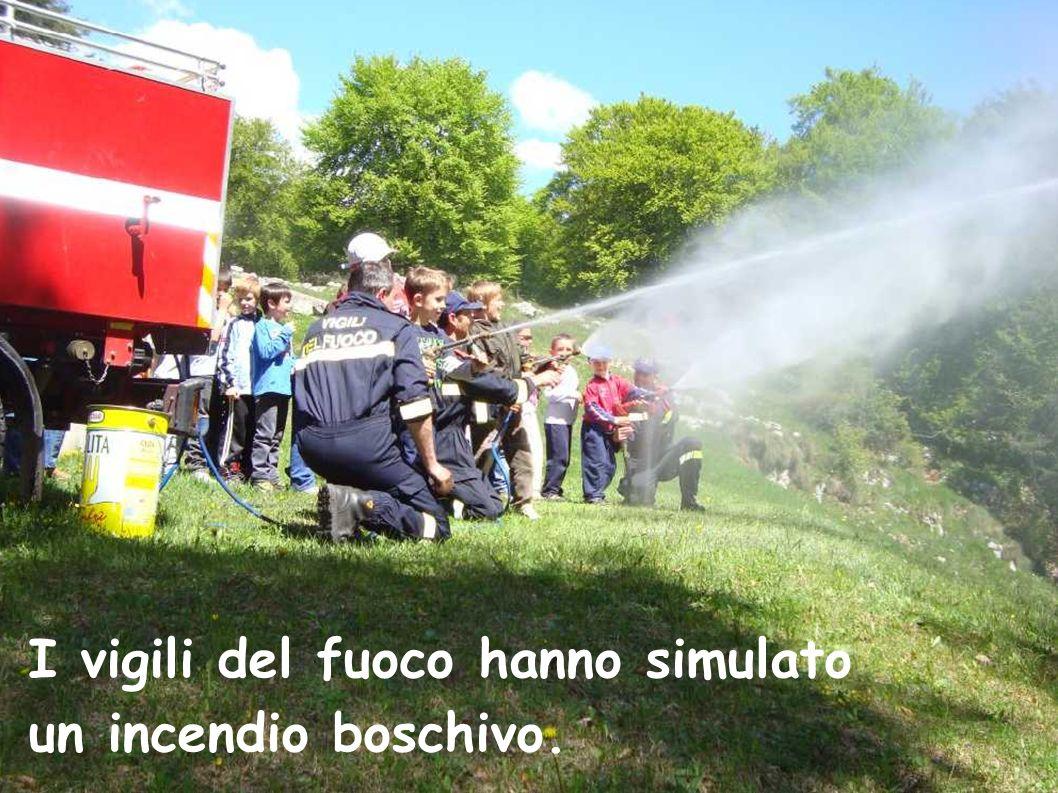 I vigili del fuoco hanno simulato un incendio boschivo.