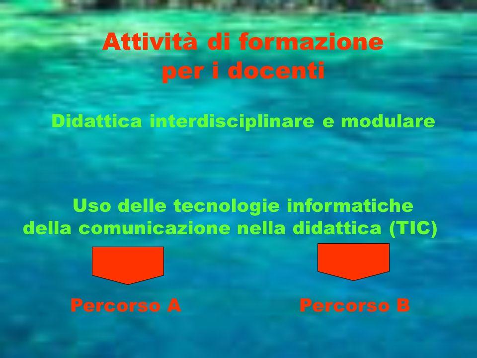 Attività di formazione per i docenti Didattica interdisciplinare e modulare Uso delle tecnologie informatiche della comunicazione nella didattica (TIC
