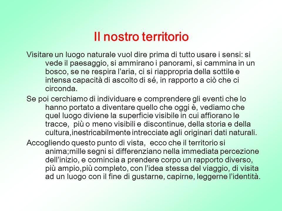 PUZZOLA FAMIGLIA:Mustelidi ORDINE:Carnivori SPECIE: Mustela Putorius DISTRIBUZIONE: In Italia è diffusa in tutta la penisola.