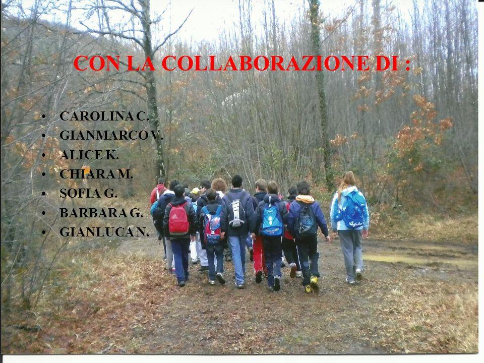 CON LA COLLABORAZIONE DI : CAROLINA C. GIANMARCO V. ALICE K. CHIARA M. SOFIA G. BARBARA G. GIANLUCA N.