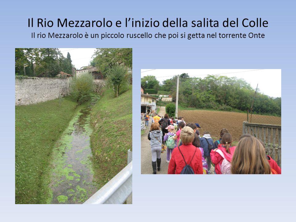 Il Rio Mezzarolo e linizio della salita del Colle Il rio Mezzarolo è un piccolo ruscello che poi si getta nel torrente Onte