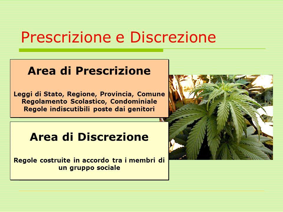 Prescrizione e Discrezione Area di Prescrizione La coltivazione di marijuana è vietata e perseguita dalle leggi dell stato Area di Prescrizione La col