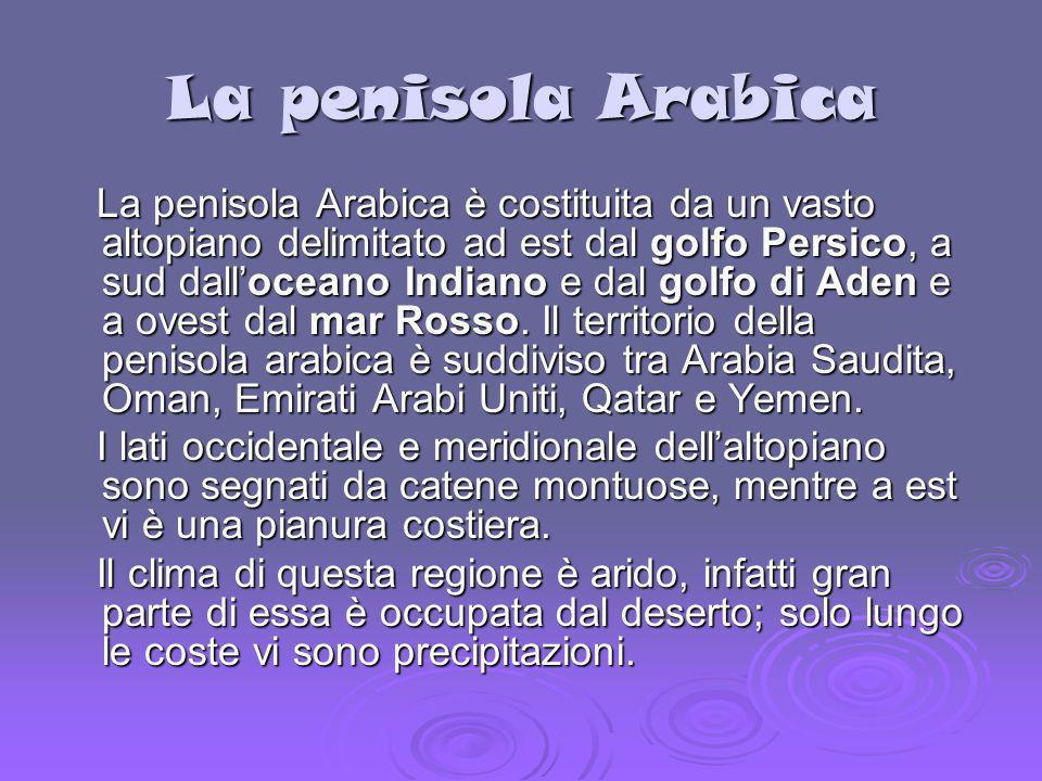 La penisola Arabica La penisola Arabica è costituita da un vasto altopiano delimitato ad est dal golfo Persico, a sud dalloceano Indiano e dal golfo d