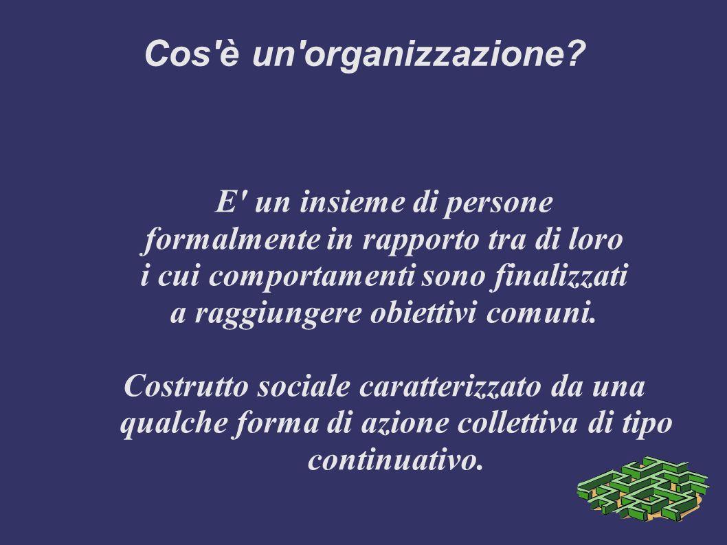 Cos'è un'organizzazione? E' un insieme di persone formalmente in rapporto tra di loro i cui comportamenti sono finalizzati a raggiungere obiettivi com