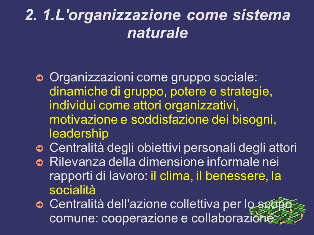 2. 1.L'organizzazione come sistema naturale Organizzazioni come gruppo sociale: dinamiche di gruppo, potere e strategie, individui come attori organiz