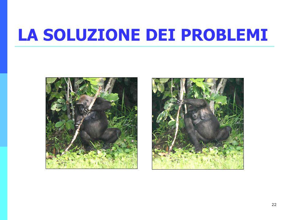 22 LA SOLUZIONE DEI PROBLEMI