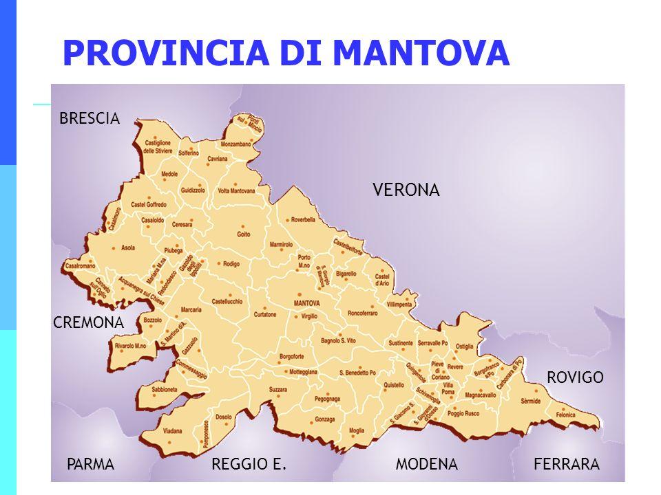 8 PROVINCIA DI MANTOVA BRESCIA VERONA CREMONA PARMAREGGIO E.MODENAFERRARA ROVIGO