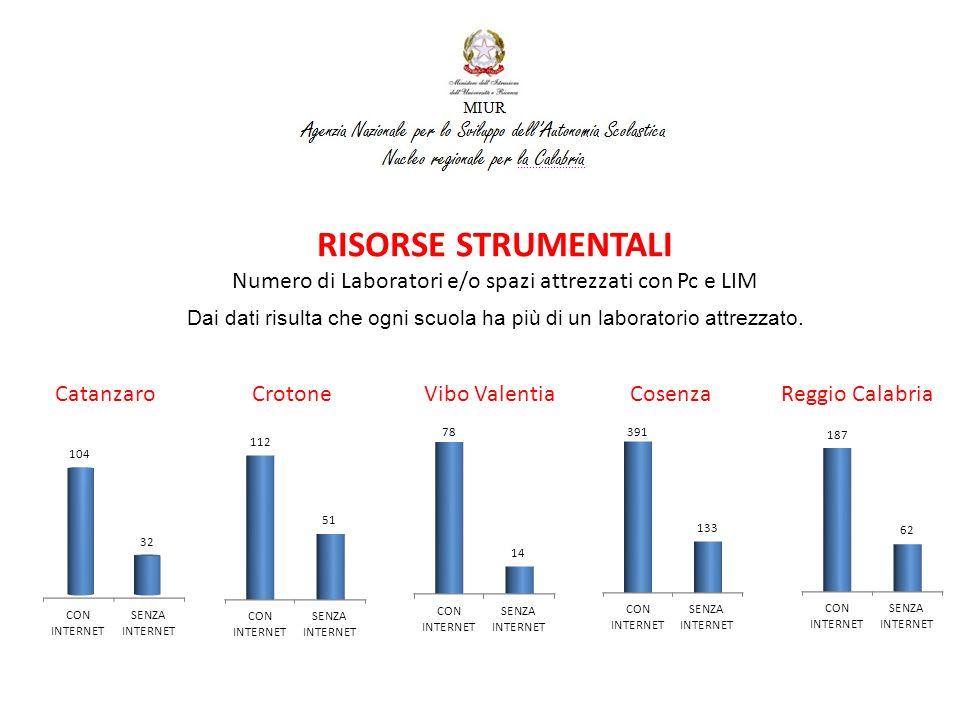 RISORSE STRUMENTALI Numero di Classi che hanno strumenti Multimediali in Aula Catanzaro Crotone Vibo Valentia Cosenza Reggio Calabria La percentuale di classi che hanno strumenti multimediali in aula è meno della metà.