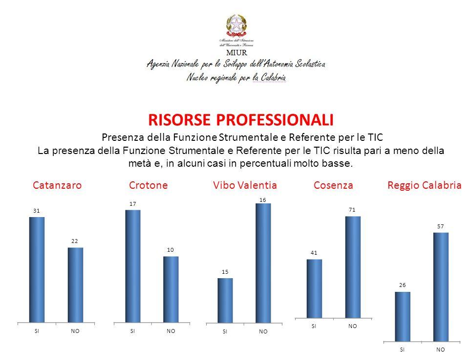 Catanzaro Crotone Vibo Valentia Cosenza Reggio Calabria RISORSE PROFESSIONALI Presenza di Tecnico di Laboratorio Informatico La presenza di Tecnico di Laboratorio Informatico risulta in percentuale molto bassa, in alcuni casi addirittura inferiore al 10%.