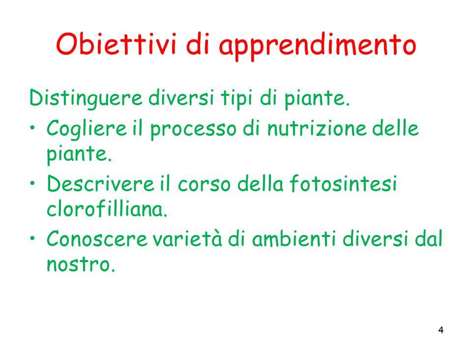 Obiettivi di apprendimento Distinguere diversi tipi di piante. Cogliere il processo di nutrizione delle piante. Descrivere il corso della fotosintesi