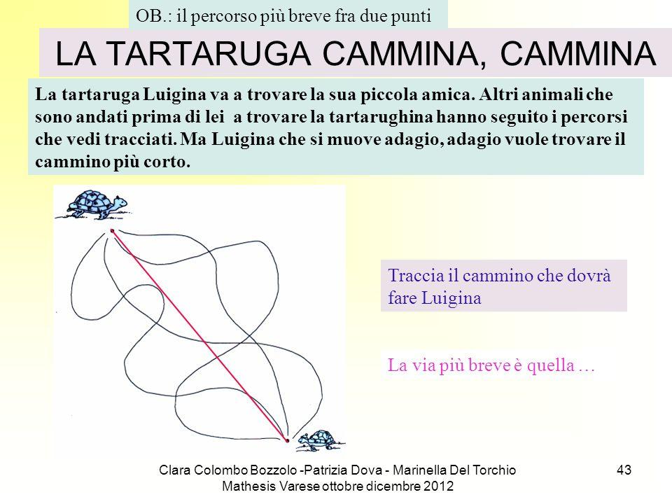 Clara Colombo Bozzolo -Patrizia Dova - Marinella Del Torchio Mathesis Varese ottobre dicembre 2012 43 LA TARTARUGA CAMMINA, CAMMINA La tartaruga Luigi