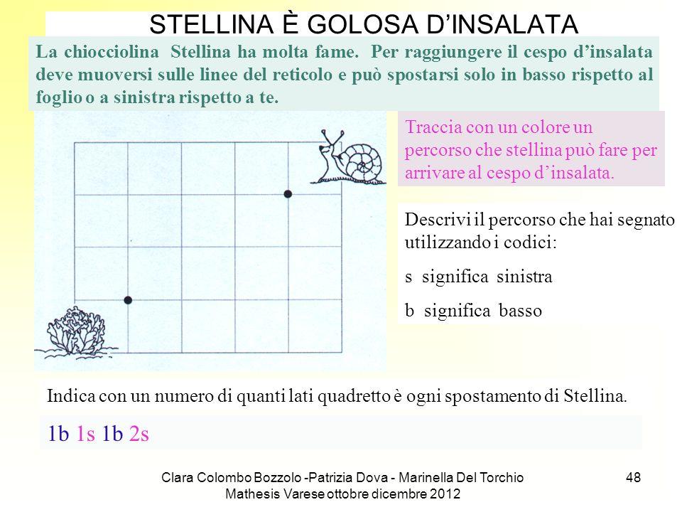 Clara Colombo Bozzolo -Patrizia Dova - Marinella Del Torchio Mathesis Varese ottobre dicembre 2012 48 STELLINA È GOLOSA DINSALATA La chiocciolina Stel