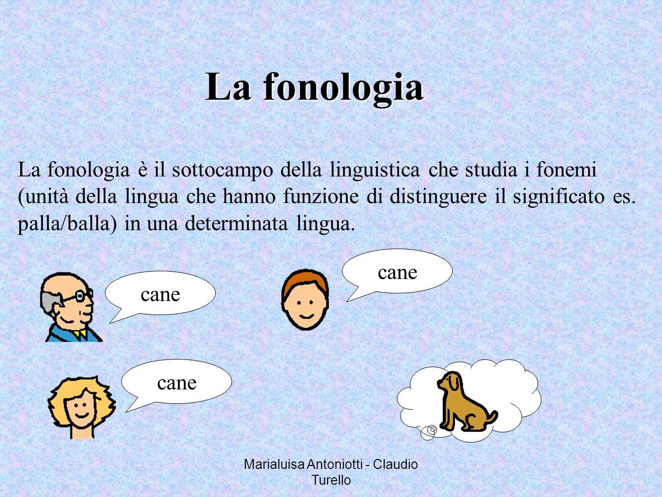 Marialuisa Antoniotti - Claudio Turello La fonologia La fonologia è il sottocampo della linguistica che studia i fonemi (unità della lingua che hanno