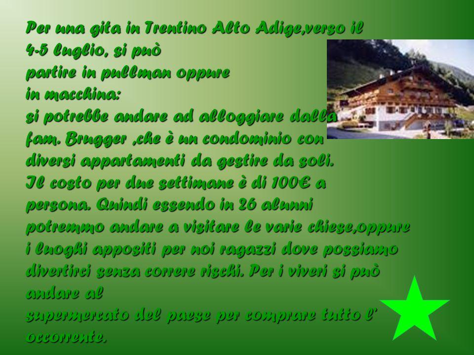 Per una gita in Trentino Alto Adige,verso il 4-5 luglio, si può partire in pullman oppure in macchina: si potrebbe andare ad alloggiare dalla fam. Bru