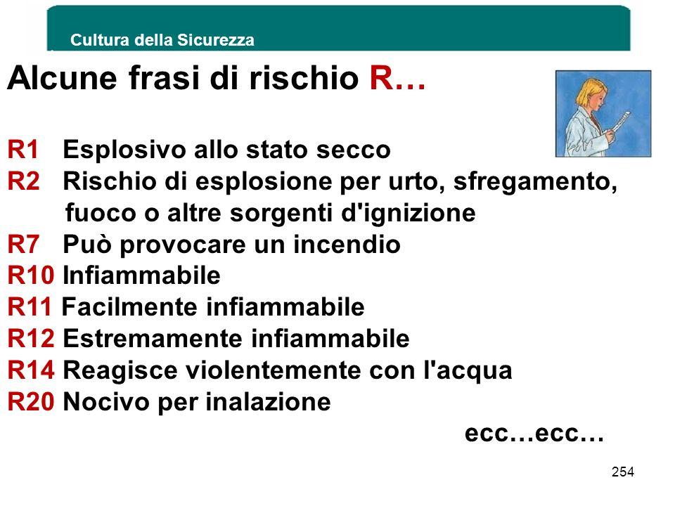 Cultura della Sicurezza 254 Alcune frasi di rischio R… R1 Esplosivo allo stato secco R2 Rischio di esplosione per urto, sfregamento, fuoco o altre sor