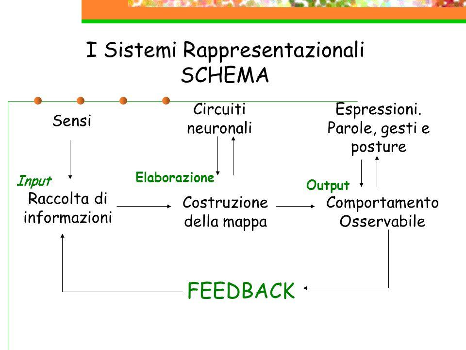 I Sistemi Rappresentazionali SCHEMA Sensi Raccolta di informazioni Circuiti neuronali Costruzione della mappa Comportamento Osservabile Espressioni. P