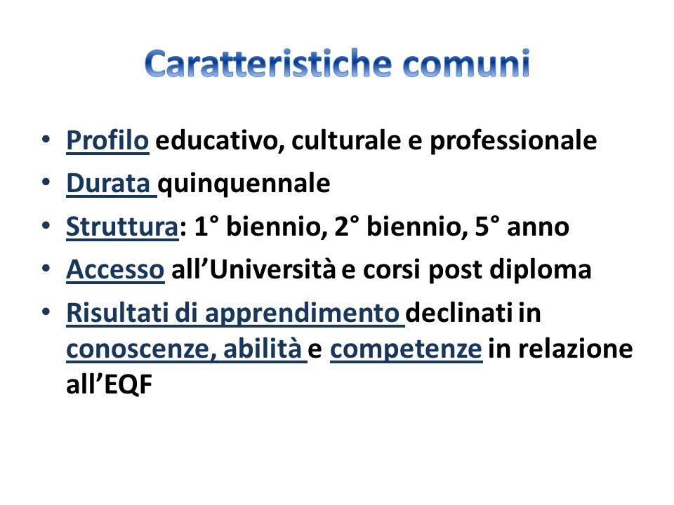 Profilo educativo, culturale e professionale Durata quinquennale Struttura: 1° biennio, 2° biennio, 5° anno Accesso allUniversità e corsi post diploma