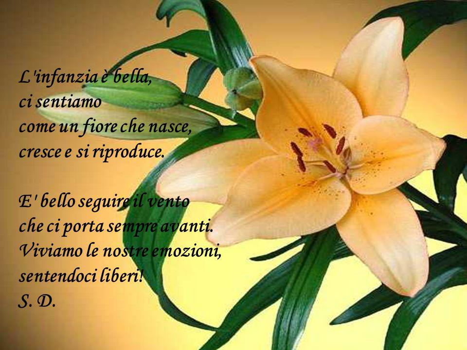 L'infanzia è bella, ci sentiamo come un fiore che nasce, cresce e si riproduce. E' bello seguire il vento che ci porta sempre avanti. Viviamo le nostr
