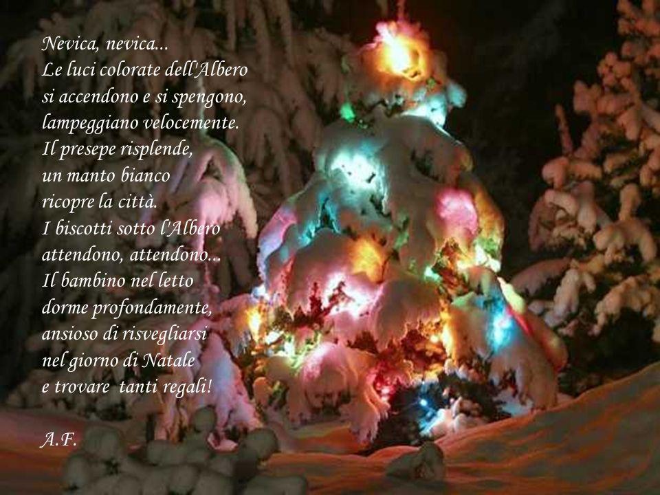 Nevica, nevica... Le luci colorate dell'Albero si accendono e si spengono, lampeggiano velocemente. Il presepe risplende, un manto bianco ricopre la c