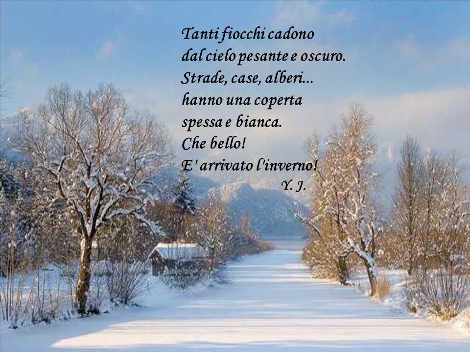 Tanti fiocchi cadono dal cielo pesante e oscuro. Strade, case, alberi... hanno una coperta spessa e bianca. Che bello! E' arrivato l'inverno! Y. J.