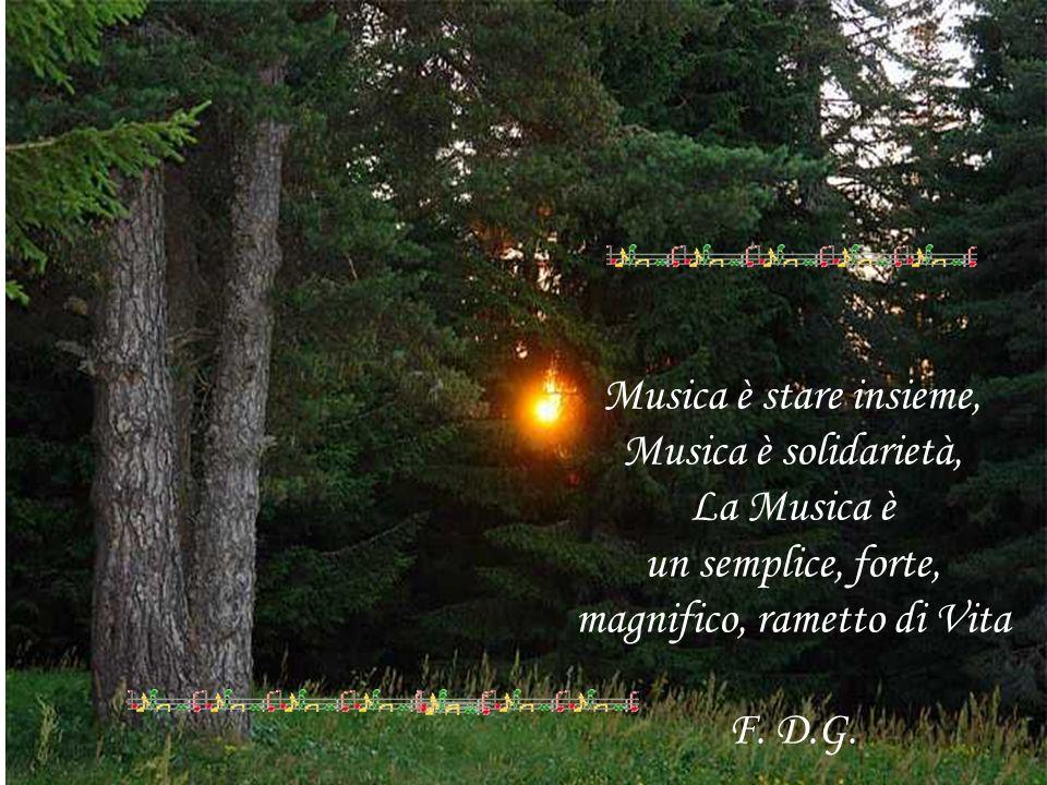 Musica è stare insieme, Musica è solidarietà, La Musica è un semplice, forte, magnifico, rametto di Vita F. D.G.