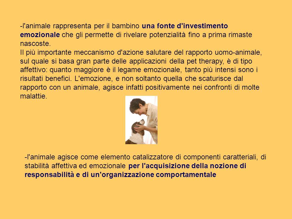 -l'animale rappresenta per il bambino una fonte d'investimento emozionale che gli permette di rivelare potenzialità fino a prima rimaste nascoste. Il