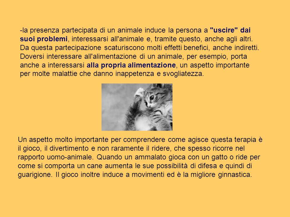 -la presenza partecipata di un animale induce la persona a
