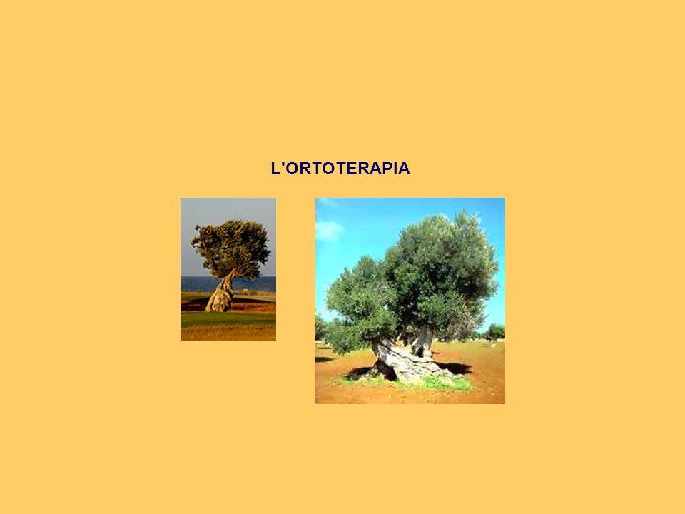 L'ORTOTERAPIA